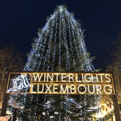 Winterlights Place d'Armes © LCTO